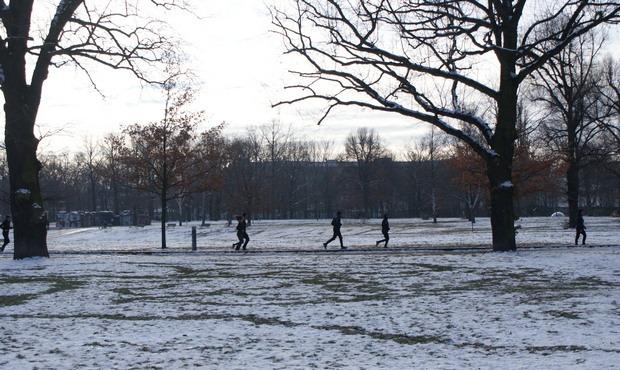 Volkspark Friedrichshain con neve
